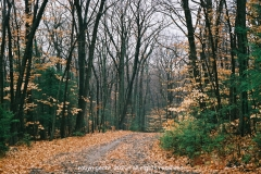 New-England-in-Fall-1