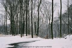 Winter-in-Ohio
